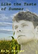 Cover for Like the Taste of Summer