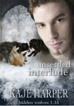 Unsettled Interlude cover
